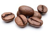 coffeebean_318917000